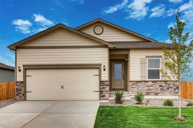 997 Cascade Falls Street, Severance, CO 80550 (#3796350) :: The Scott Futa Home Team