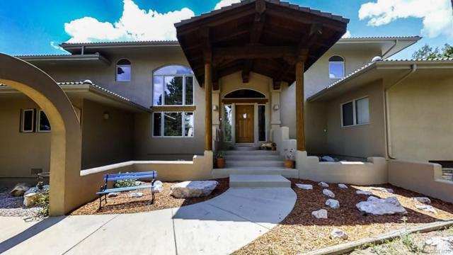 101 Suncrest Place, Divide, CO 80814 (#3796429) :: The DeGrood Team