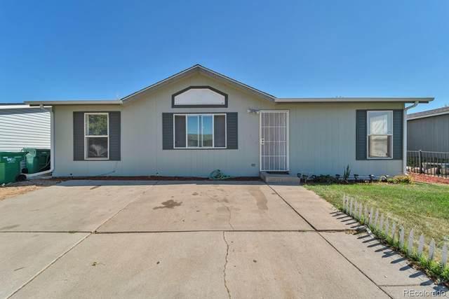 114 Winnipeg Street, Lochbuie, CO 80603 (#3796631) :: Briggs American Properties