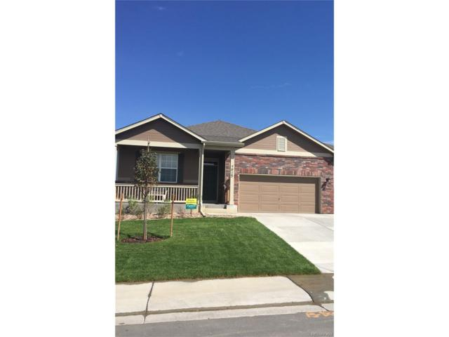 13648 Valentia Street, Thornton, CO 80602 (#3799166) :: The Griffith Home Team