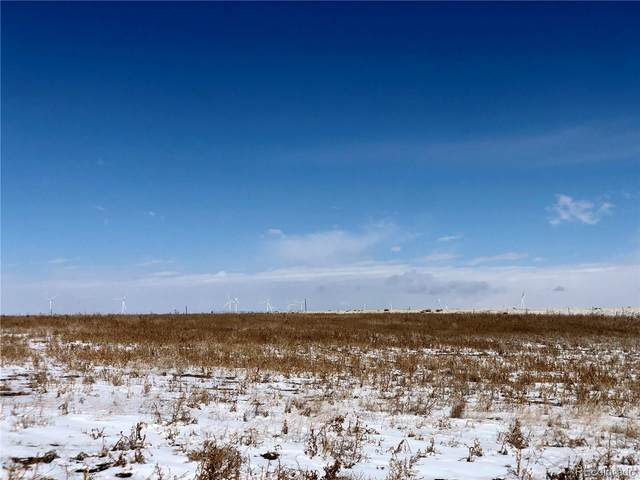 0001 County Road 153, Matheson, CO 80830 (#3799865) :: Compass Colorado Realty
