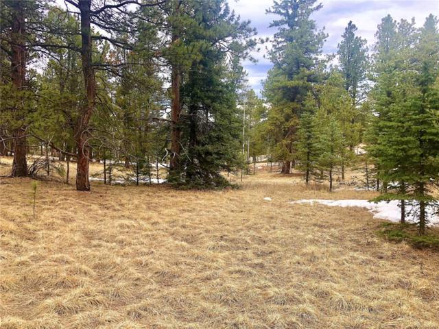 275 S Mountain Estates Road, Florissant, CO 80816 (#3803258) :: Compass Colorado Realty