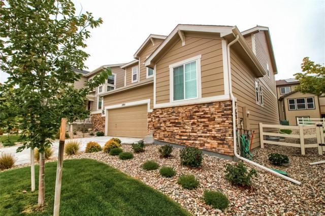 2705 Garganey Drive, Castle Rock, CO 80104 (MLS #3805511) :: Kittle Real Estate