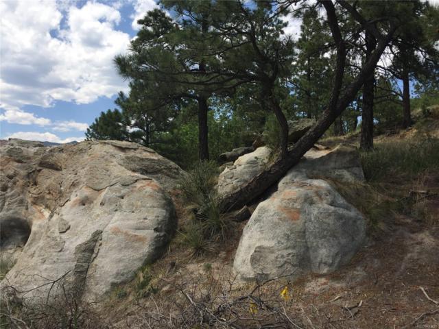 7450 Colton Bluffs View, Colorado Springs, CO 80919 (MLS #3806934) :: 8z Real Estate