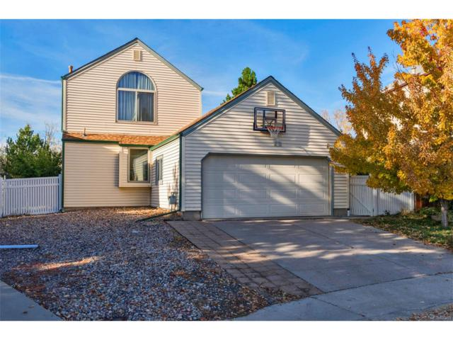8025 S Johnson Court, Littleton, CO 80128 (MLS #3807381) :: 8z Real Estate