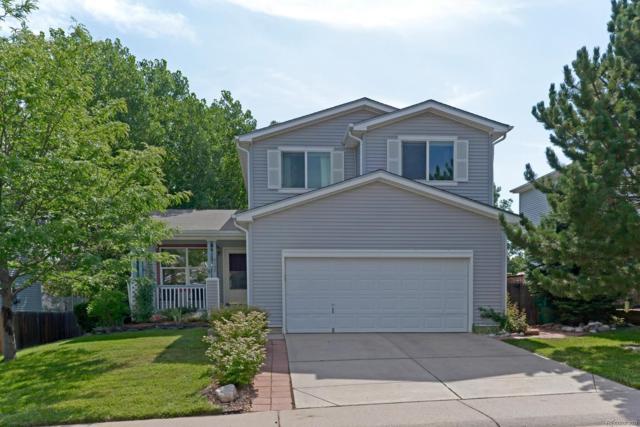8146 Eagleview Drive, Littleton, CO 80125 (#3807488) :: Bring Home Denver