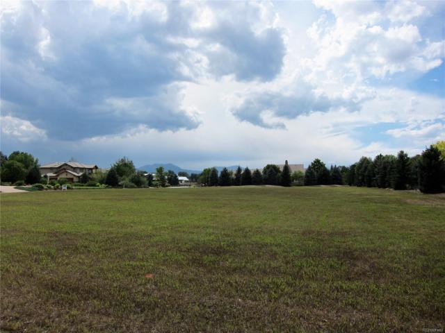1017 White Hawk Ranch Drive, Boulder, CO 80303 (MLS #3808902) :: 8z Real Estate