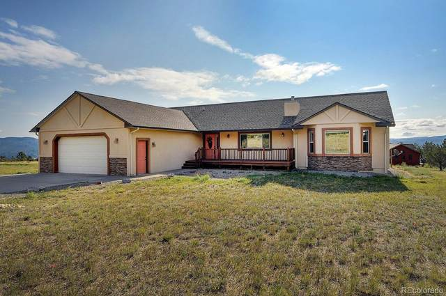 13610 County Road 261, Nathrop, CO 81236 (#3809188) :: The DeGrood Team