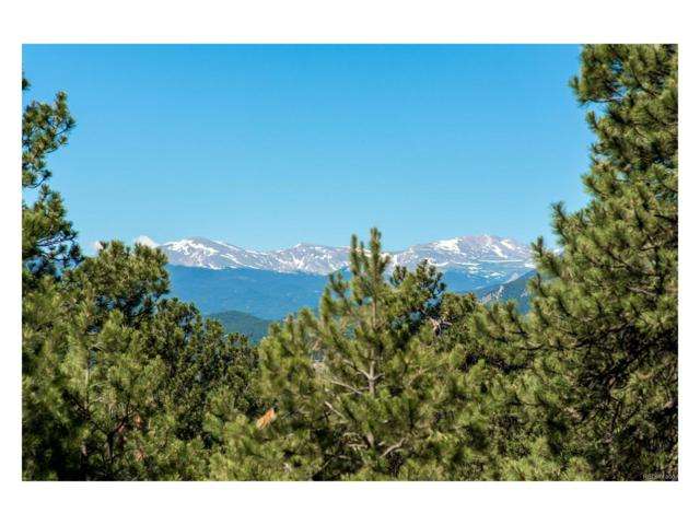 1891 Larkspur Drive, Golden, CO 80401 (#3809282) :: The City and Mountains Group