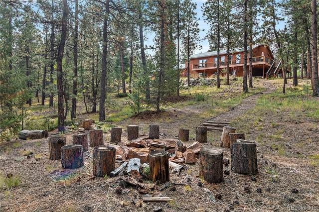 858 Forest Drive, Bailey, CO 80421 (#3811033) :: The DeGrood Team
