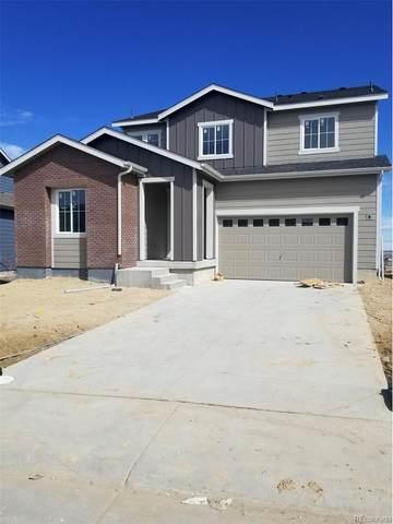 6562 Merrimack Drive, Castle Pines, CO 80108 (#3811211) :: The HomeSmiths Team - Keller Williams