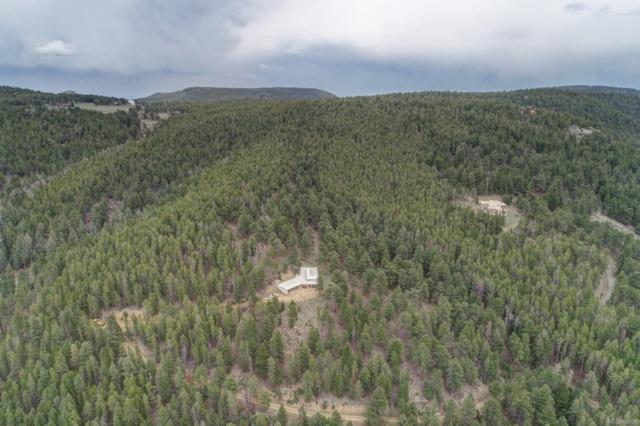 23141 Black Bear Trail, Conifer, CO 80433 (MLS #3812871) :: 8z Real Estate