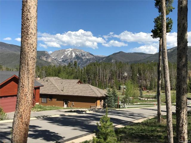 45 Mad Moose Lane, Grand Lake, CO 80447 (#3812988) :: Wisdom Real Estate