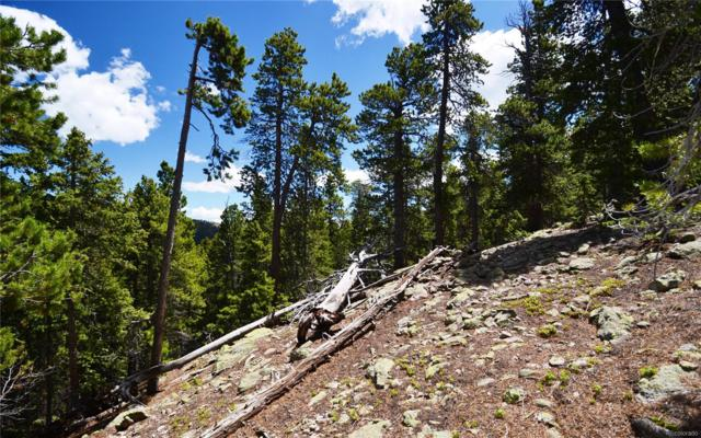 0 Sawmill Lane, Idaho Springs, CO 80452 (#3814107) :: 5281 Exclusive Homes Realty