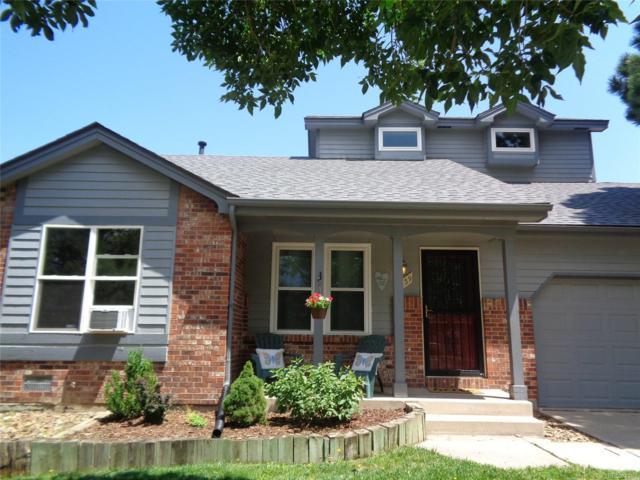 3539 Pennyroyal Lane, Colorado Springs, CO 80906 (MLS #3817468) :: 8z Real Estate