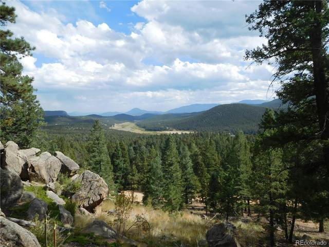 0 Old Sawmill Road, Bailey, CO 80421 (#3817714) :: The Artisan Group at Keller Williams Premier Realty