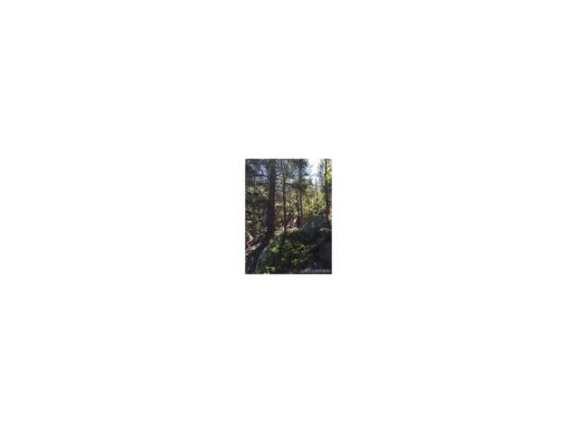 Wood Rock Road, Golden, CO 80403 (MLS #3819096) :: 8z Real Estate