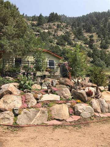 1615 County Road 308 A, Dumont, CO 80436 (#3820201) :: The DeGrood Team