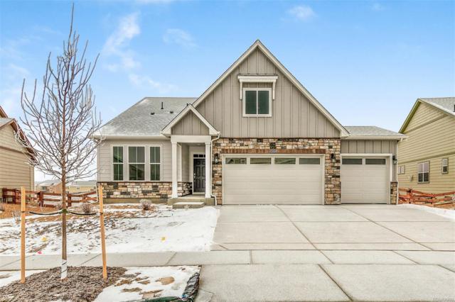 15561 Syracuse Way, Thornton, CO 80602 (MLS #3821254) :: 8z Real Estate