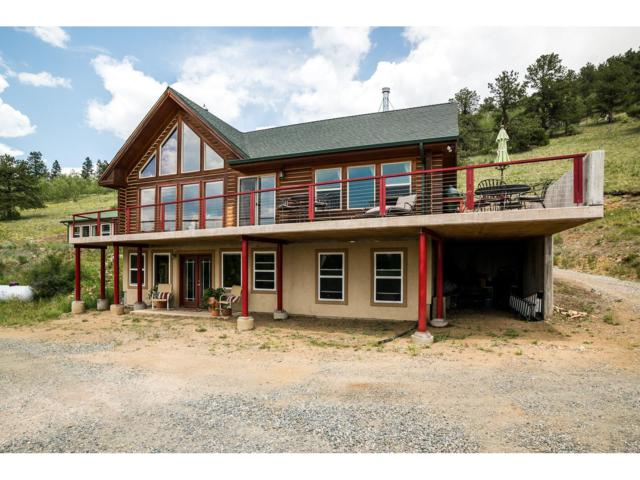 845 Red Tail Ridge Road, Idaho Springs, CO 80452 (MLS #3823313) :: 8z Real Estate