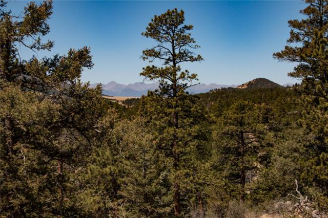 8151 Co Road 358, Westcliffe, CO 81252 (#3823778) :: The Heyl Group at Keller Williams