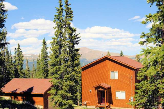 238 Grizzly Drive, Fairplay, CO 80440 (MLS #3827527) :: 8z Real Estate