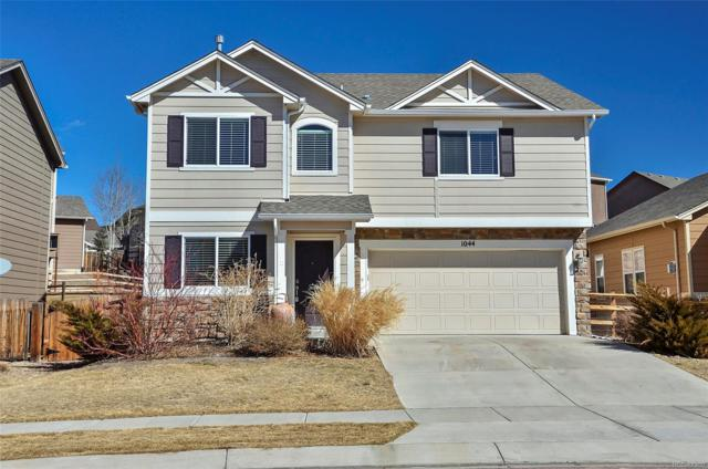 1044 Diamond Rim Drive, Colorado Springs, CO 80921 (MLS #3828111) :: Bliss Realty Group