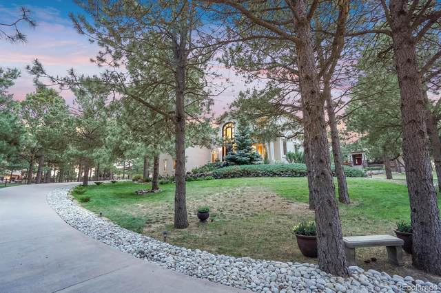 345 Lions Head Drive, Monument, CO 80132 (#3831999) :: The DeGrood Team