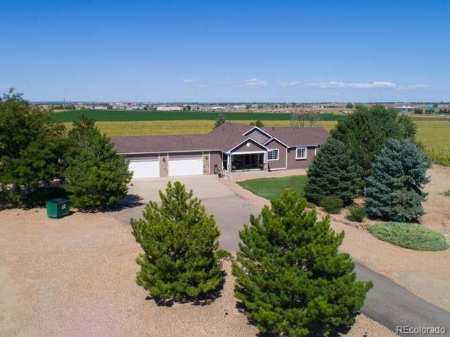 3801 County Road 12, Erie, CO 80516 (#3832130) :: The Healey Group