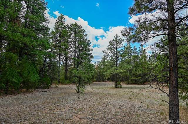 Four Mile Canyon Road, Walsenburg, CO 81089 (#3832141) :: Bring Home Denver with Keller Williams Downtown Realty LLC