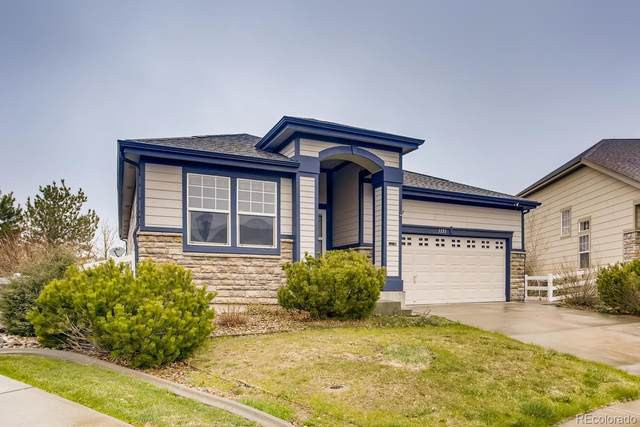 1151 S Coolidge Circle, Aurora, CO 80018 (#3835930) :: The Harling Team @ HomeSmart