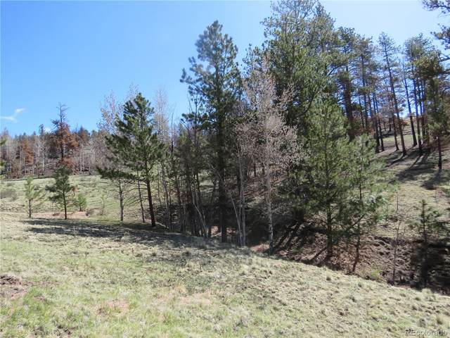 238 Chateau West Drive, Florissant, CO 80816 (MLS #3837732) :: 8z Real Estate