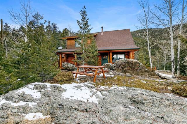 1059 Snyder Mountain Road, Evergreen, CO 80439 (MLS #3839822) :: 8z Real Estate