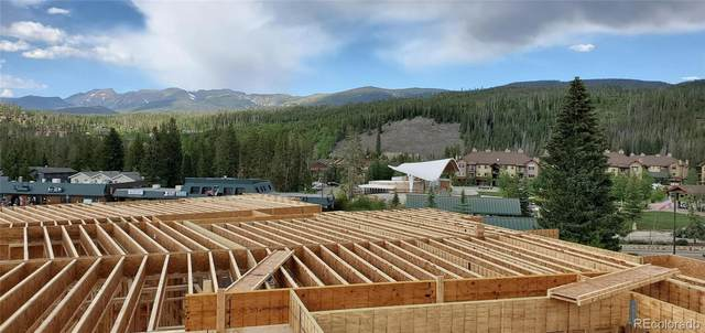 244 Lions Gate Drive, Winter Park, CO 80482 (#3845527) :: Mile High Luxury Real Estate