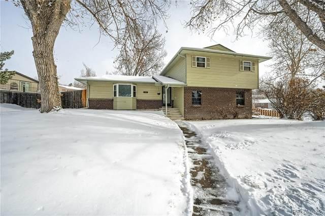 182 Johnson Drive, Castle Rock, CO 80104 (#3846502) :: iHomes Colorado