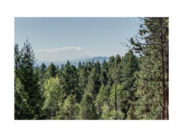 29300 S Sunset Trail, Conifer, CO 80433 (MLS #3846585) :: 8z Real Estate