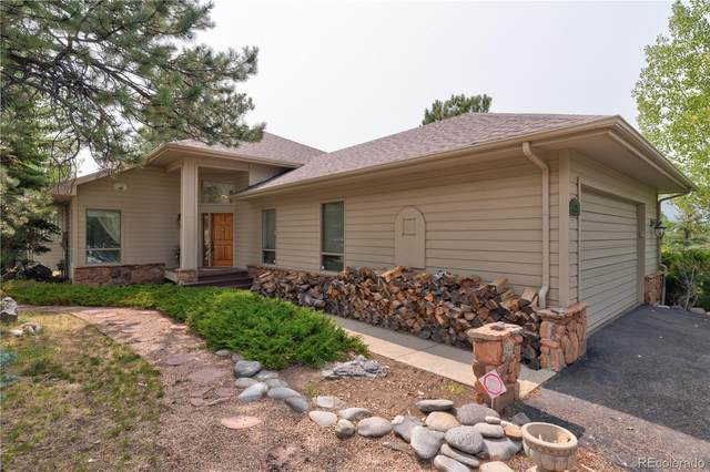 31298 Whistler Court, Evergreen, CO 80439 (MLS #3846663) :: Bliss Realty Group