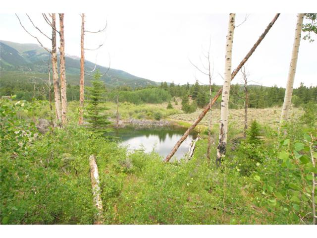6201 E State Highway 82, Twin Lakes, CO 81251 (MLS #3847683) :: 8z Real Estate