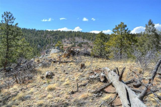 615 Skyview Road, Canon City, CO 81212 (MLS #3848978) :: 8z Real Estate