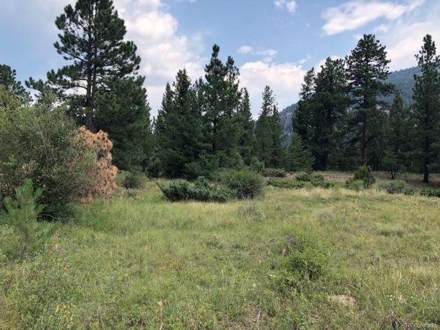 2 Elk Meadows Run, Antonito, CO 81120 (#3854948) :: House Hunters Colorado