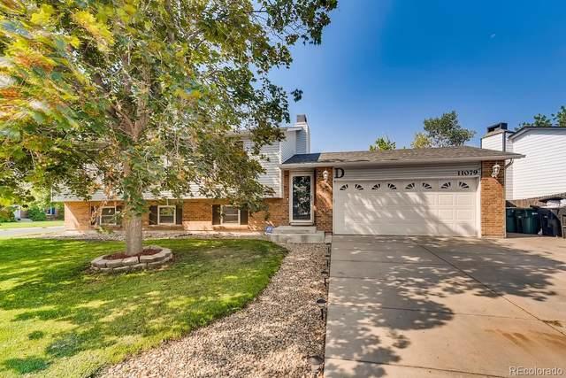11079 Eudora Way, Thornton, CO 80233 (MLS #3862130) :: 8z Real Estate