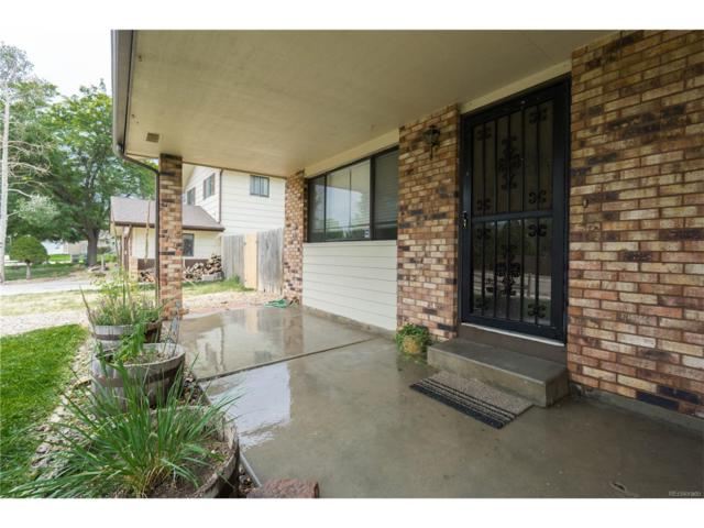 2609 34th Avenue, Greeley, CO 80634 (MLS #3865397) :: 8z Real Estate