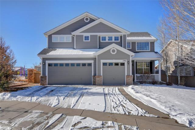 1901 Lodgepole Drive, Erie, CO 80516 (#3867740) :: 5281 Exclusive Homes Realty