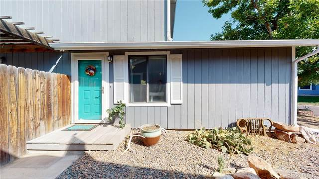 6656 W 95th Place, Westminster, CO 80021 (#3869705) :: Real Estate Professionals