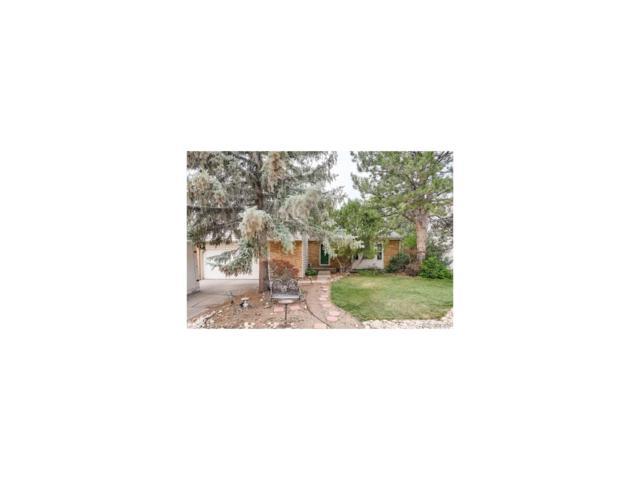11509 Ash Circle, Thornton, CO 80233 (MLS #3869893) :: 8z Real Estate