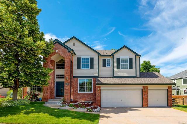2151 Mountain Maple Avenue, Highlands Ranch, CO 80129 (MLS #3870211) :: 8z Real Estate