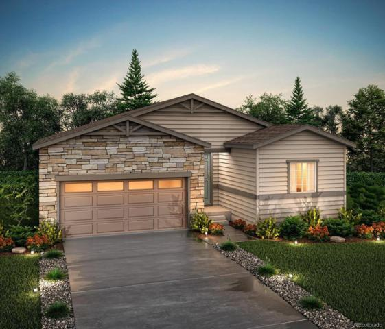 2087 Villageview Lane, Castle Rock, CO 80104 (MLS #3871937) :: 8z Real Estate