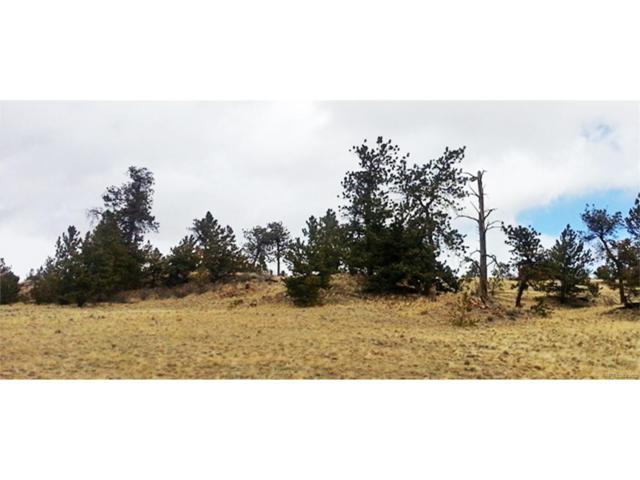 940 Pack Saddle Road, Hartsel, CO 80449 (MLS #3872082) :: 8z Real Estate