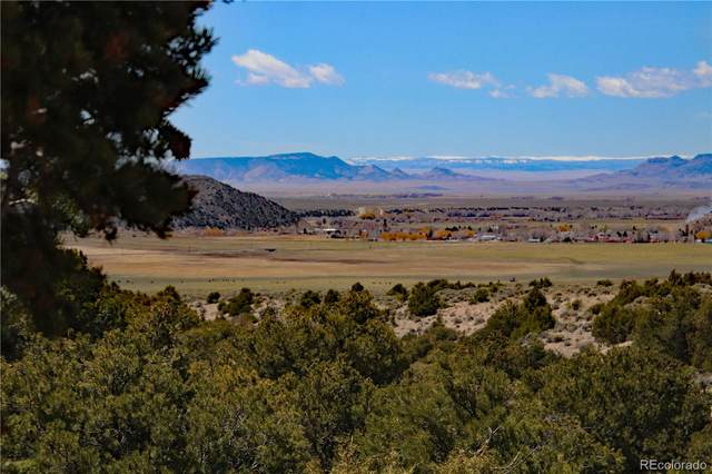 Lot 7 Pine Meadows, San Luis, CO 81152 (#3875797) :: Mile High Luxury Real Estate