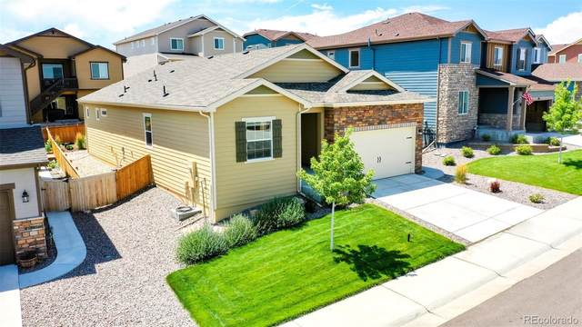 965 Mcmurdo Circle, Castle Rock, CO 80108 (#3875874) :: The DeGrood Team